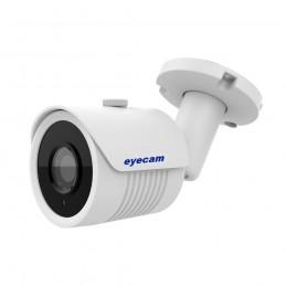 EyecamCamera IP full HD 1080P Sony 30M Eyecam EC-1346